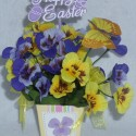 Easter Mini Pansy Box 2